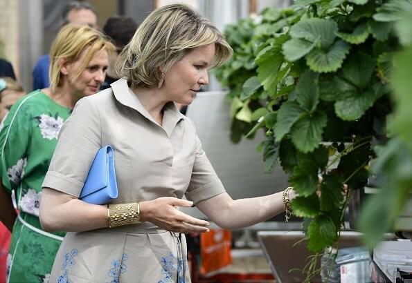 Queen Mathilde visited a farm breeds cattle, grows crops and strawberries and focuses on green care. beige cotton midi shirt dress embroidered