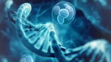 A ligação entre OGMs e a tecnologia WiFi, que causa doenças, revela a ciência