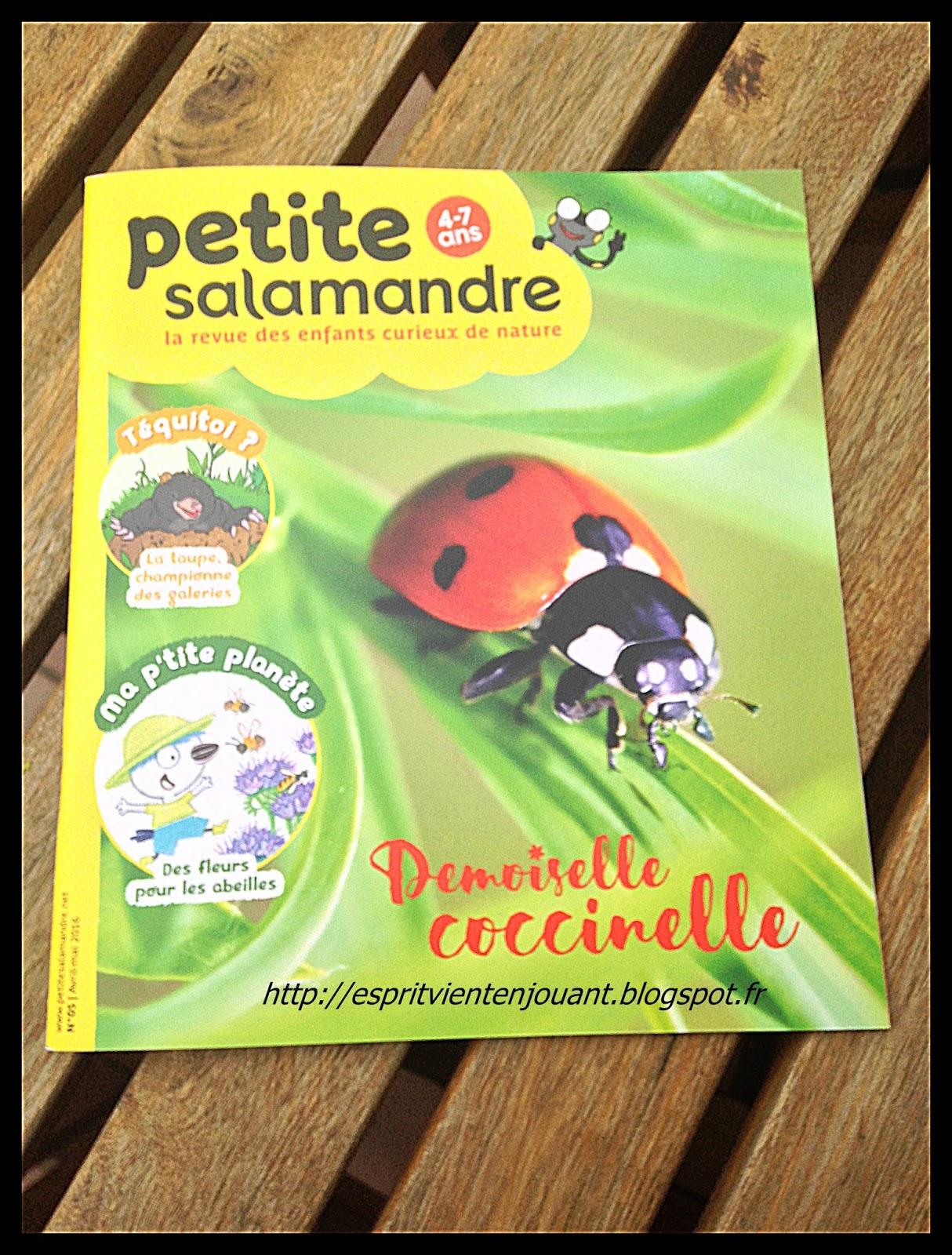 l 39 esprit vient en jouant livre petite salamandre la revue des enfants curieux de nature. Black Bedroom Furniture Sets. Home Design Ideas