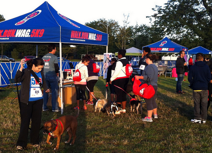 Out and About: Petco 5K9 5K race recap