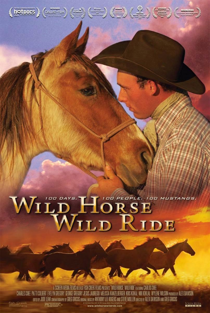 Image Result For Spirit Horse Movie