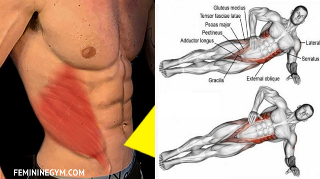 5-Exercises-to-Get-Ripped-V-cut-Obliques-Fast
