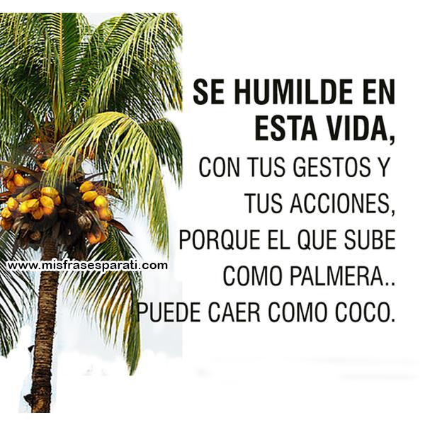Se humilde en esta vida, con tus gestos y tus acciones, porque el que sube como palmera, puede caer como coco.