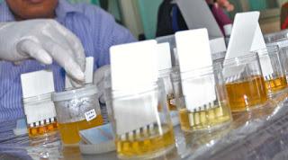 Urine 5 CPNS K2 Palopo Positif Narkoba, Ini Sanksi Dari Wali Kota