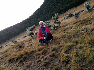 jalur pendakian surken gunung gede