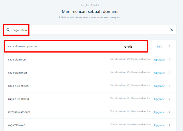 Memilih alamat domain di wordpress