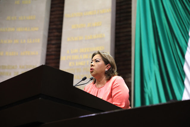 PRD, a favor de que INE aplique medida cautelar contra el Presidente y sus conferencias matutinas: Guadalupe Almaguer