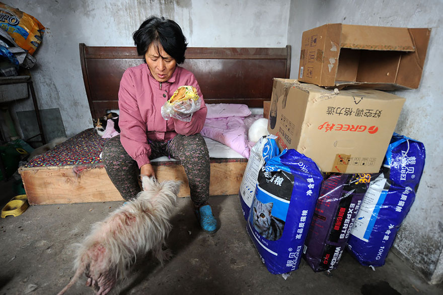 Yang makes steamed corn bread twice a day to feed the dogs, which is all she can afford - Chinese Woman Travels 1,500 Miles And Pays $1,100 To Save 100 Dogs From Chinese Dog-Eating Festival