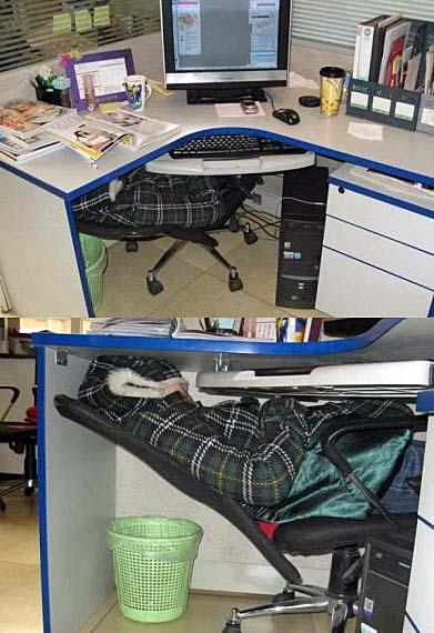 Auf Arbeit Büro schlafen ohne vom Chef erwischt zu werden