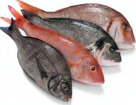 Cara Mengolah Ikan Yang Benar Dan Menyehatkan
