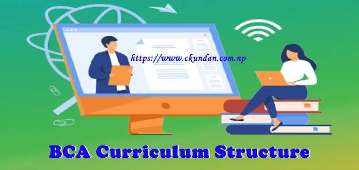 BCA Curriculum Structure