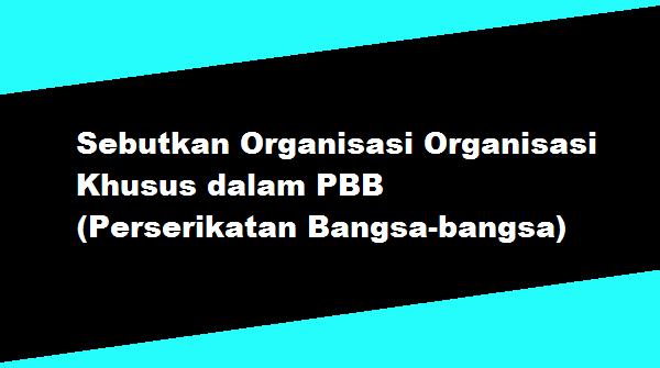 Sebutkan Organisasi Organisasi Khusus dalam PBB