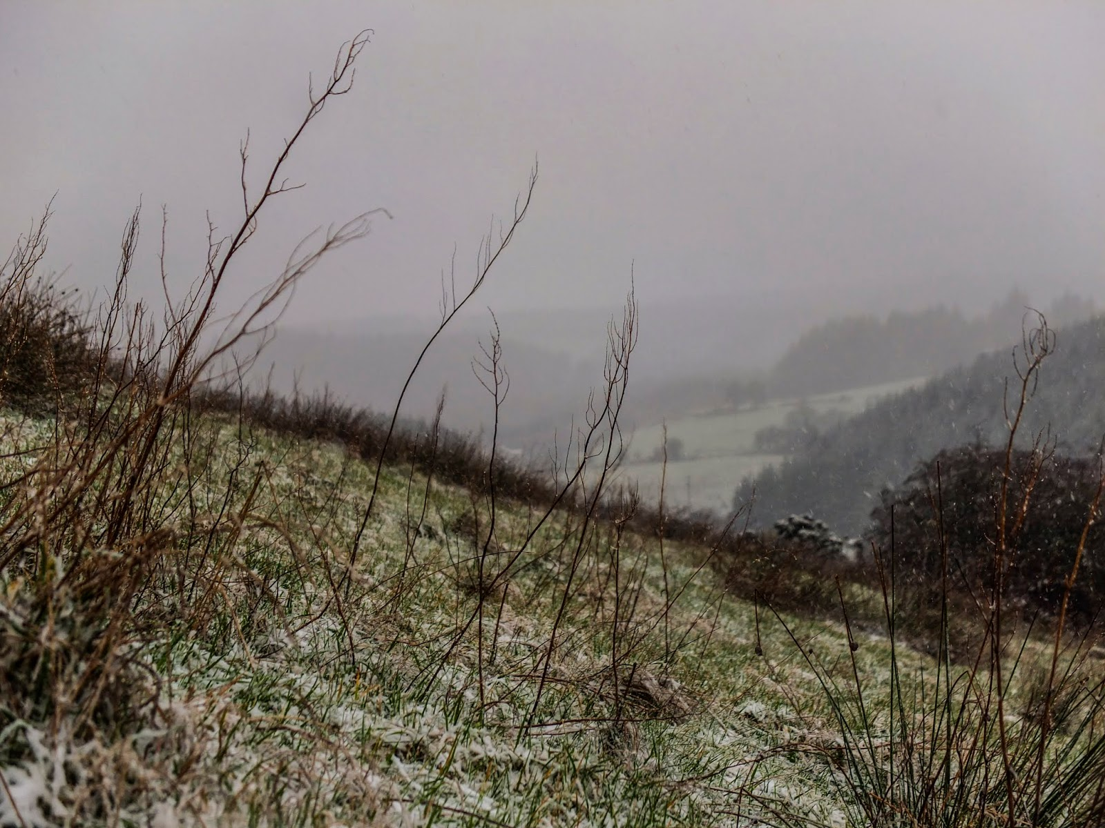 Snow beginning to fall in a valley in the Boggeragh Mountains.