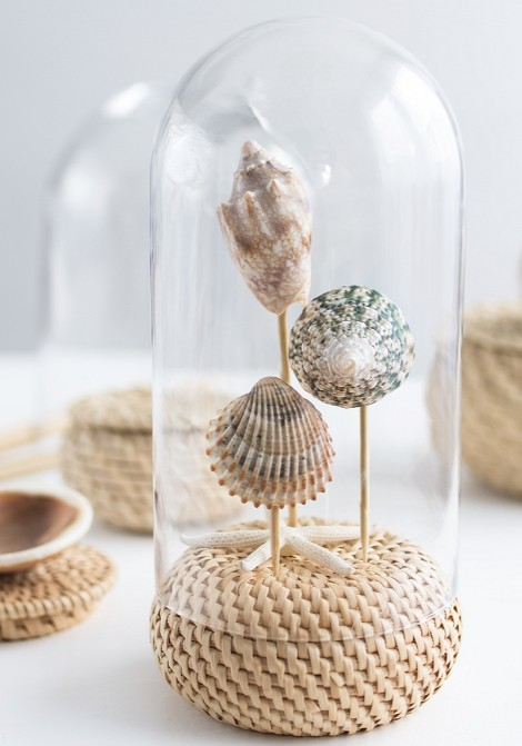 DIY Seashell Stands