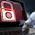 Study: AI and machine learning will help curb cyber attacks