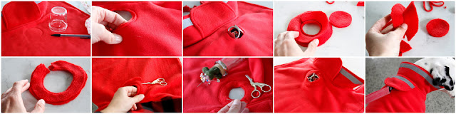 Step-by-step how to make an access hole in a dog coat for attaching a leash