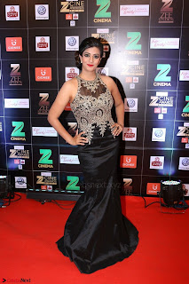 Bollywood Celebrities on the Red Carpet Of Zee Cine Awards 2017 Exclusive 120.JPG