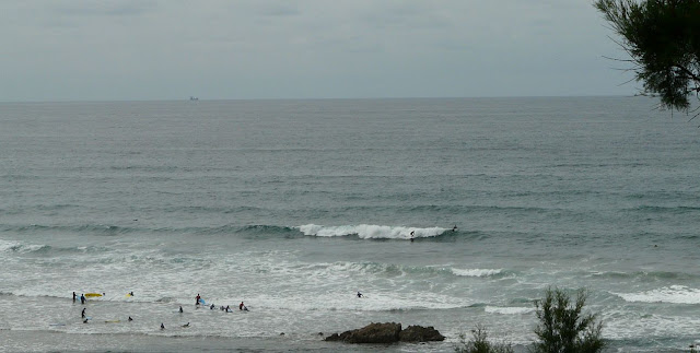 surf sopela