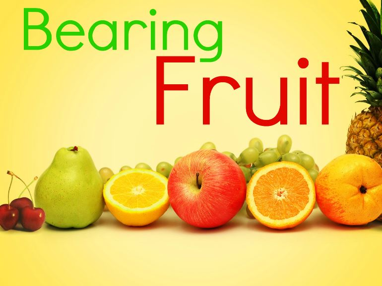 You Must Keep Bearing Fruits by Pastor Chris Oyakhilome