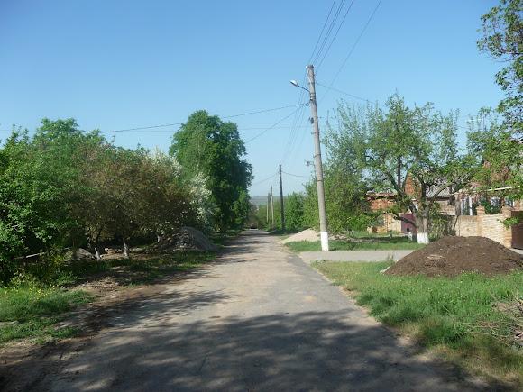 Алексеево-Дружковка. Улица Тореза