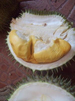 durian musang king murah
