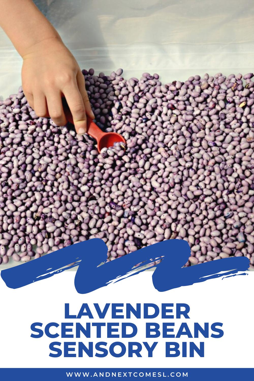 Lavender scented beans sensory bin - a simple calming sensory activity idea for kids!