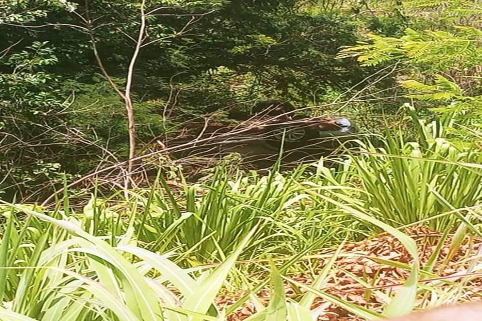 Carro-de-familia-do-DF-e-encontrado-em-penhasco-na-Bahia-com-tres-corpos-dentro-4