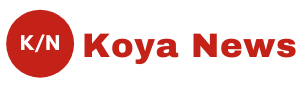News Koya -  Read Latest News and Articles