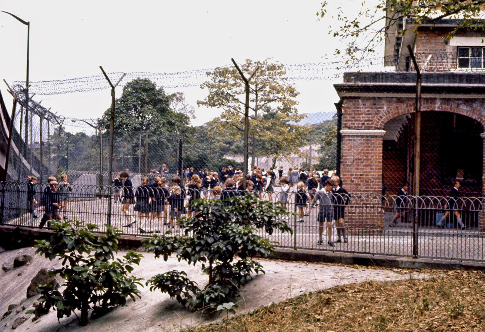 School children behind barbed wire - Hong Kong 1969