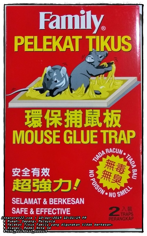 Pictures of Family branded rat sticker traps we used in the beginning. Directly ineffective because rats do not stick. A lizard is attached to a. # Family Rat Stickers. Mouse Glue Trap. No Poison, No Smell. No poison, no smell. Safe and effective. Safe and effective. 2 traps. 2 traps. # Wednesday, 10 April 2019, 22:01 # IMG_20190410_220119 # Xiaomi Redmi Note 5A #