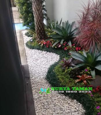 Tukang Taman Bintaro - SuryaTaman