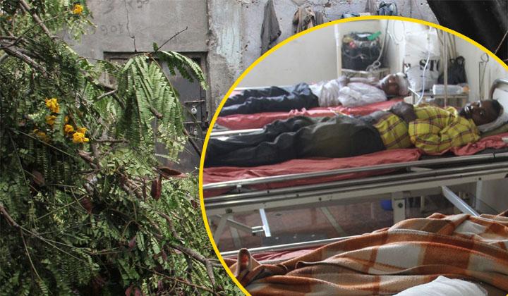 यूपी में आंधी और बरसात ने ली 20 लोगों की जान