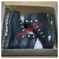 TNF VERBERA BACKPACKER GTX