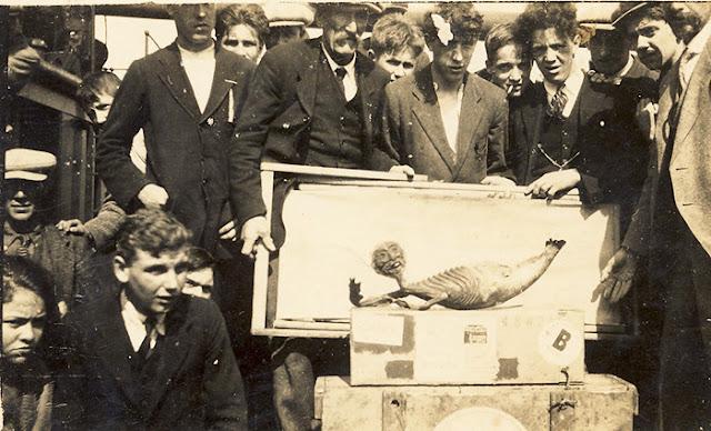 Ilustração de algumas pessoas segurando um quadro contendo uma fotografia da sereia de fiji.