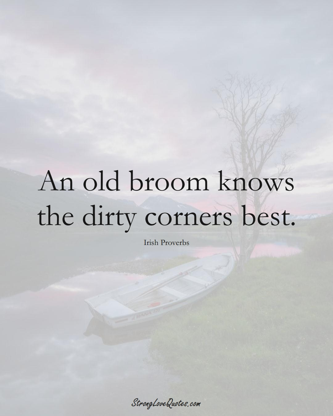 An old broom knows the dirty corners best. (Irish Sayings);  #EuropeanSayings