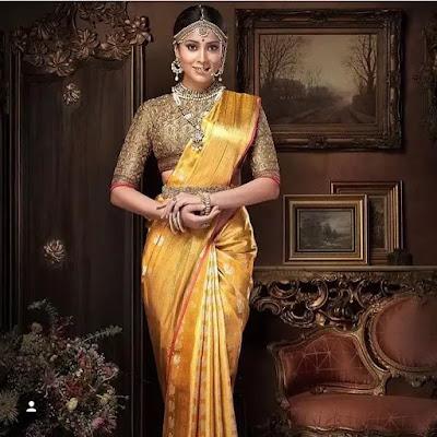 Shriya Saran Classic Bun