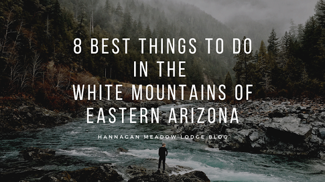8 Best Things To Do in the White Mountains of Eastern Arizona blog cover image