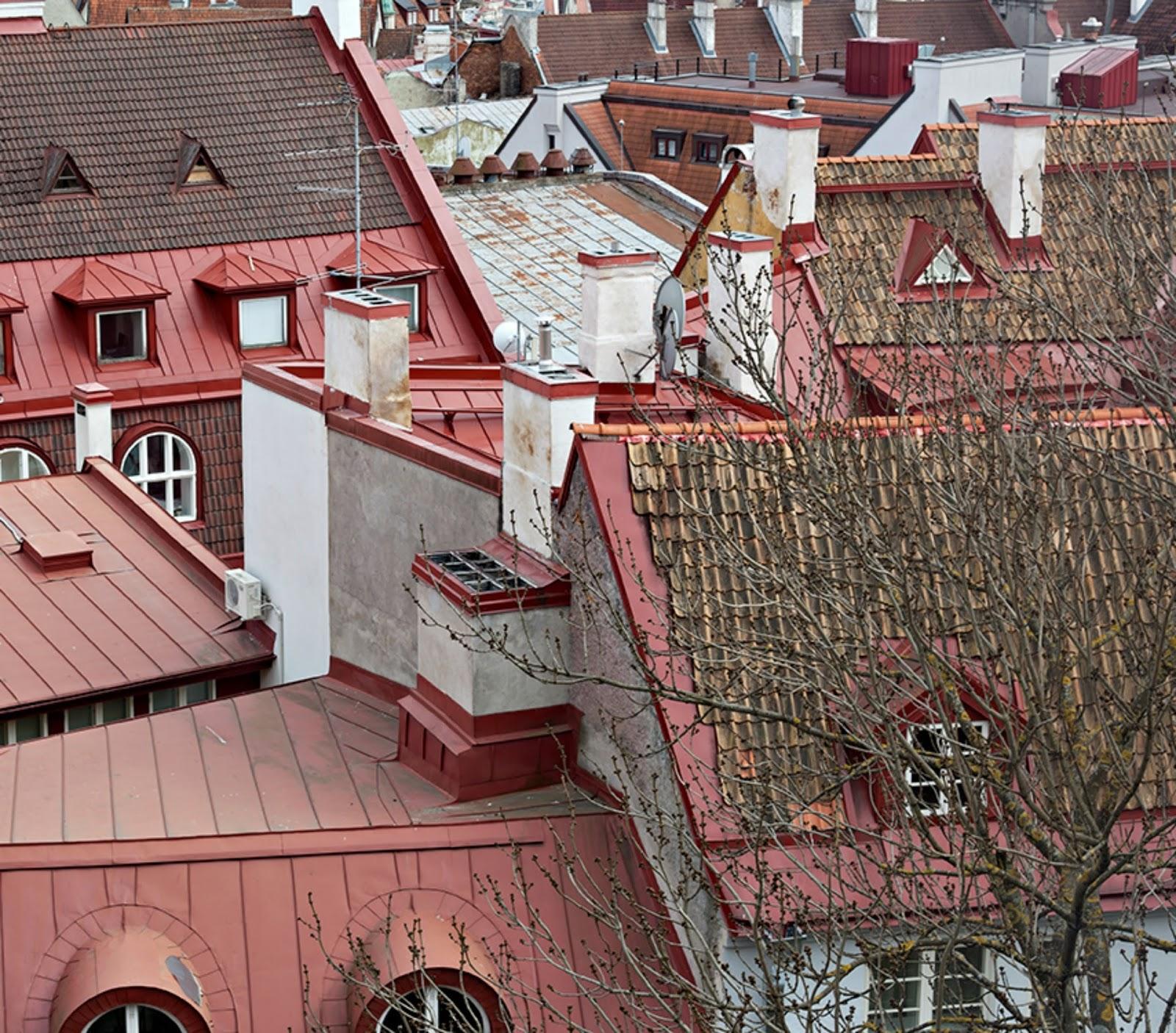 explore Tallinn