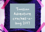 https://www.wieke.com/haken/haaktechnieken/tunisian-adventure-crochet-a-long/