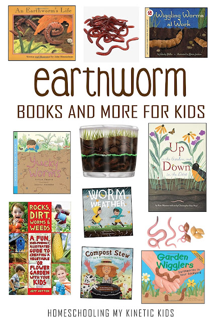 Learn about squiggly, wiggly worms with these 10 hands-on ideas for springtime or any time.  Great for a bug unit or garden theme.