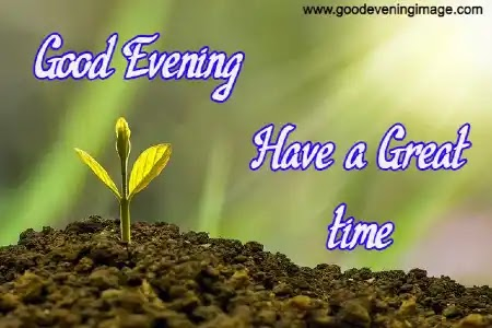 Best Good Evening Images Download For Whatsapp HD