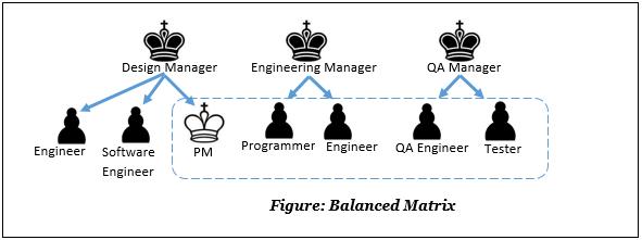 matrix diagram pmp