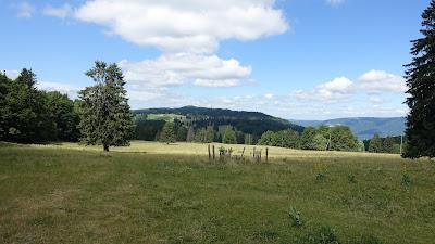Unterwegs auf dem Montoz-Plateau