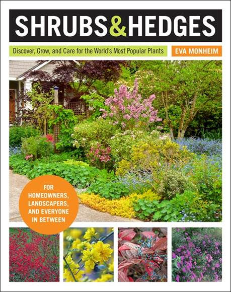 win a copy of Shrubs and Hedges book