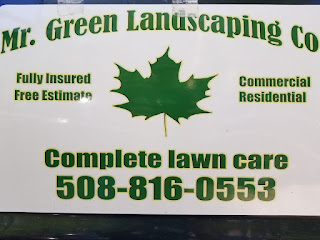 Mr. Green Landscaping Co