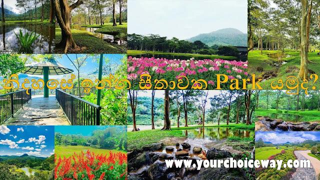 නිදහසේ ඉන්න සීතාවක Park යමුද 🍃🎋🎋🌱❤️ ( Sithawaka Park ) - Your Choice Way
