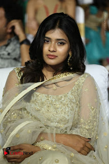 Nanna Nenu Na Boyfriends Telugu Movie Audio Launch Stills  0040.jpg