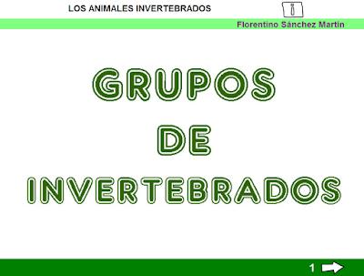 http://ceiploreto.es/sugerencias/cplosangeles.juntaextremadura.net/web/curso_3/naturales_3/grupos_invertebrados_3/grupos_invertebrados_3.html