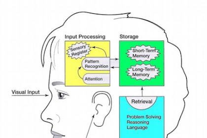 Paradigma Sosial Kognitif Dalam Pendidikan