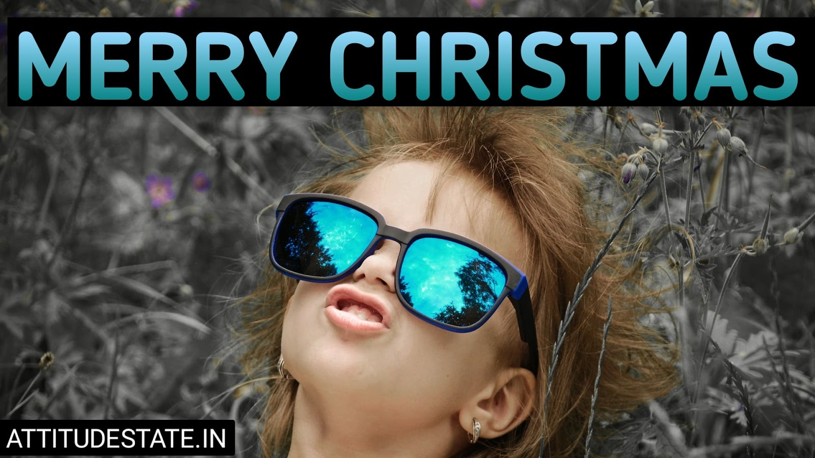 hilarious merry christmas images